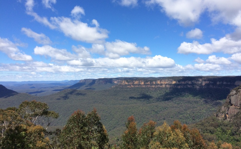 Thank you to my 600 followers! (From the BlueMountains)