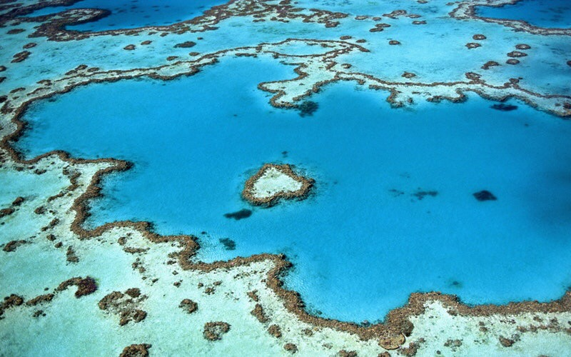 I'm going to the Great BarrierReef!