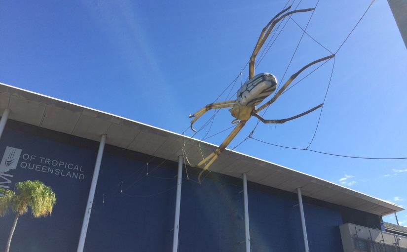 The biggest spider I have seen in Australia sofar
