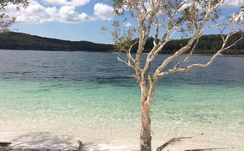 Travel Diaries: Lake McKenzie (Fraser IslandTrip)