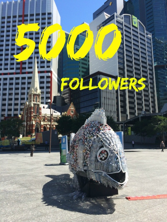 5000followers!